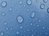 A Close-up of Water Droplets on a Surface Photographic Print by Todd Gipstein