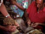 A Man Bundles up a Bunch of Finished Cigars in a Factory in Trinidad, Cuba, Trinidad, Cuba Photographic Print by Taylor S. Kennedy