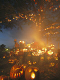 Grinning Lit Jack-O-Lanterns Surrounding and Filling a Tree Photographic Print by Richard Nowitz