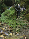 Woman Carries Mountain Bike up Steep Stone Stairs Next to Stream Photographic Print by Mark Cosslett