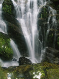 Small Waterfall Near the Milford Track on New Zealands South Island Photographic Print by Mark Cosslett