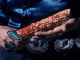 Native American Woman Prepares for a Corn Dance Photographic Print by Ira Block
