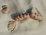 Two Pairs of Feet Push up Through the Sand Photographic Print by Jodi Cobb