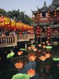 Tea House in Shanghais Yuyuan Garden during Chinese New Year Reprodukcja zdjęcia autor xPacifica