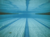 Bill Curtsinger - A Below-The-Surface View of a Swimming Pool Fotografická reprodukce