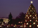 Night View of the Lighted Tree in Front of the White House Lámina fotográfica por Kenneth Garrett