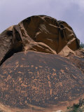 Petroglyphs on a Rock at Canyonlands National Park Photographic Print by Paul Nicklen