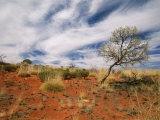 Sand Dune Formations at Uluru National Park Photographic Print by Richard Nowitz