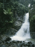 A Waterfall in the Tropical Rainforest El Yunque Park in Puerto Rico Lámina fotográfica por Kennedy, Taylor S.