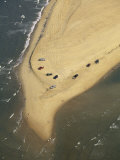 Aerial View of Cars on the Coast of the Outer Banks Photographic Print by Steve Winter