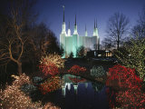 Colored Lights Decorate Bushes on the Mormon Temple Grounds Photographic Print by Karen Kasmauski