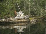 Remolcador abandonado en la orilla del puerto de Barnard Lámina fotográfica por Nowitz, Richard