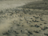 Aerial View of Hundreds of Motorcyclists Racing Across the Mojave Desert Fotoprint van Walter Meayers Edwards