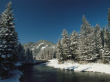 Madison River, Gallatin National Forest, Montana Photographic Print by Raymond Gehman