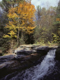 Woodland View and Falls in Autumn, Virginia Photographic Print by Medford Taylor