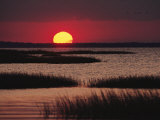 Sunset over Chincoteague Island Marsh, Virginia Photographic Print by Medford Taylor