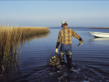 A Clam Digger Carries His Haul Through Chincoteague Island Marshes Fotografie-Druck von Medford Taylor