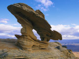 A Rock Formation Shaped by Wind Erosion Overlooks the Grand Canyon Photographic Print by Melissa Farlow