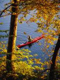 Woman Kayaking with Fall Foliage, Potomac River, Maryland Lámina fotográfica por Brown, Skip