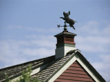 A Flying Pig Weather Vane on a Roof Top Photographic Print by Darlyne A. Murawski