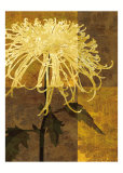 Golden Mums I Poster di Keith Mallett
