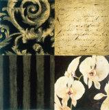 Orchid Sketch II Posters by Elizabeth Jardine