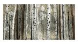 Silberfarbene Einfassung|Silver lining Poster von Tandi Venter
