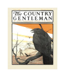Perched Crow, c.1919 Affiches par Charles Livingston Bull