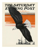 Soaring Eagle, c.1924 Prints by Charles Livingston Bull