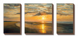 Seashore Tranquility Canvas Set by Dan Werner