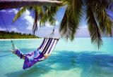 Playa tropical Pósters