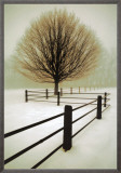 Solitude Framed Canvas Print by David Winston