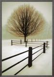 Solitude Framed Canvas Print by David Winston