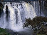 Tississat Falls, Bahar Dar, Amhara, Ethiopia Photographic Print by Jane Sweeney