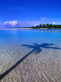 Shadow of Palm Tree on Lagoon, Cook Islands Fotografie-Druck von Peter Hendrie