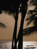 Tropical Island Paradise, Fiji, Pacific Photographic Print by John Hay