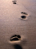 Footprints in the Sand of Eco Beach, South of Broome, Broome, Australia Photographic Print by Trevor Creighton