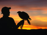 Man Holding a Falcon at Sunset, Perquin, El Salvador Photographic Print by Alfredo Maiquez
