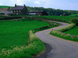 Country Road and Farmhouse, Goathland, England Photographic Print by Grant Dixon