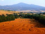 Hay Field with Monte Amiata Behind, Near Pienza, Tuscany, Italy Fotografisk trykk av Tomlinson, David