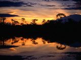 Sunset Over Lagoons of Cuyabeno in the Ecuadorian Amazon Basin, Cuyabeno Fauna Reserve, Ecuador Photographic Print by Alfredo Maiquez