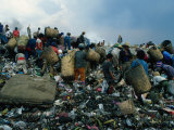 People Searching Through Rubbish in Manila's Smoky Mountain, Manila, Philippines Lámina fotográfica por Oliver Strewe