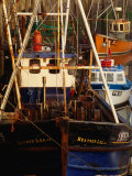 Fishing Boats in Padstow Harbour, Padstow, Cornwall, England Photographic Print by Stephen Saks