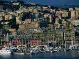 City Above Port and Marina, Genova, Liguria, Italy Photographic Print by Dallas Stribley