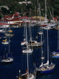 Yachts Moored in Harbour, Gustavia, St. Barts Photographic Print by Wayne Walton