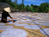 Drying Rice Paper Before Cutting into Noodles, Vietnam Fotodruck von Patrick Syder