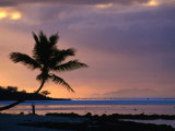 Silhouette of a Palm Tree and a Person Exercising on the Beach at Dawn, Coral Coast, Fiji Photographic Print by David Wall