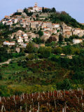 Medieval Hilltop Town Overlooking Vineyards, Motovun, Croatia Photographic Print by Wayne Walton