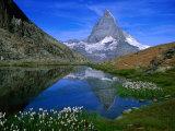 Matterhorn and the Riffelsee, Valais, Switzerland Fotoprint van Gareth McCormack