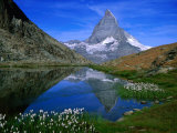 Matterhorn and the Riffelsee, Valais, Switzerland 写真プリント : ガレス・マコーマック